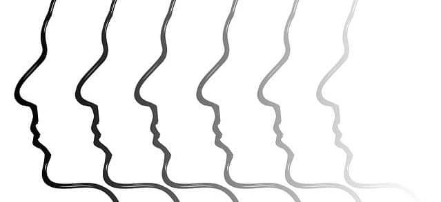 Psychose - Begriff im Lexikon der Fachbegriffe in der Heilpraktiker Psychotherapie Ausbildung